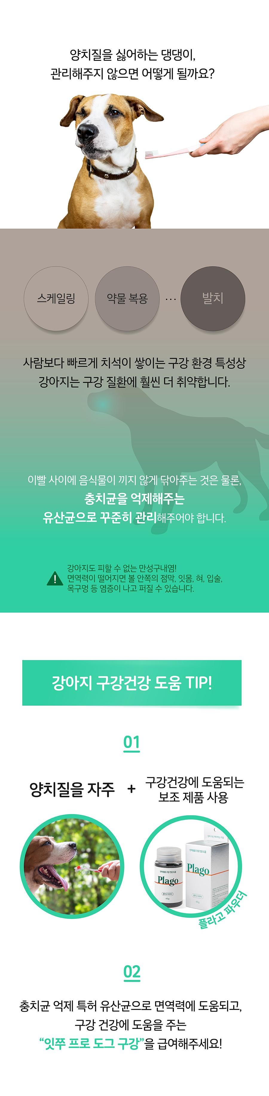 it 잇쭈 프로 도그 구강 특대용량 (8개입*8개)-상품이미지-2